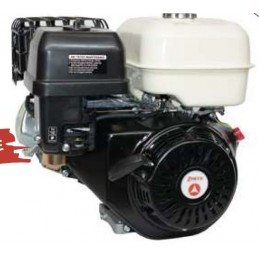 Petrol engine ZBM 420...