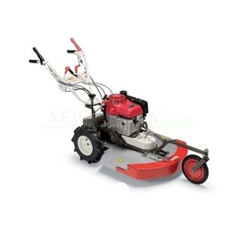 Self-propelled mower from...